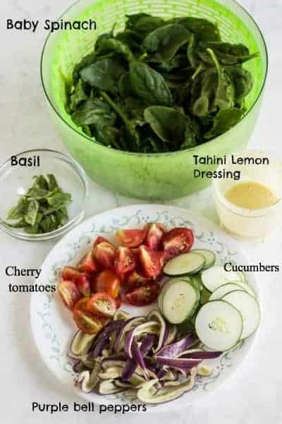 Salmon salad w/lemon-tahini dressing