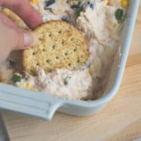 Southwestern Cheesy Dip blog