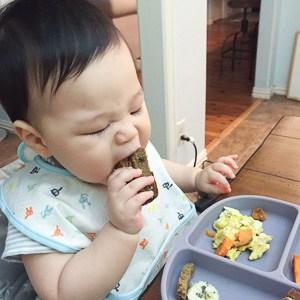 Pumpkin Oat Bread - Baby Led Weaning