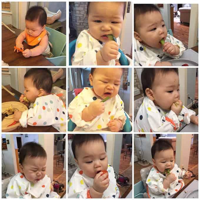 MjandHungryman Calebthefoodie Baby Led weaning