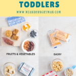 healthy travel snacks for toddlers - mjandhungryman