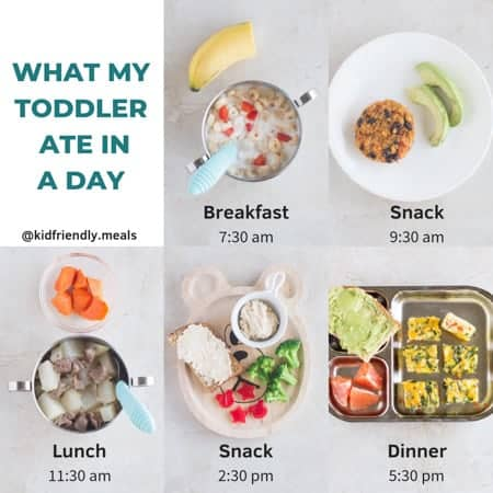 what my toddler ate in a day showing the meals and snacks along with mealtimes