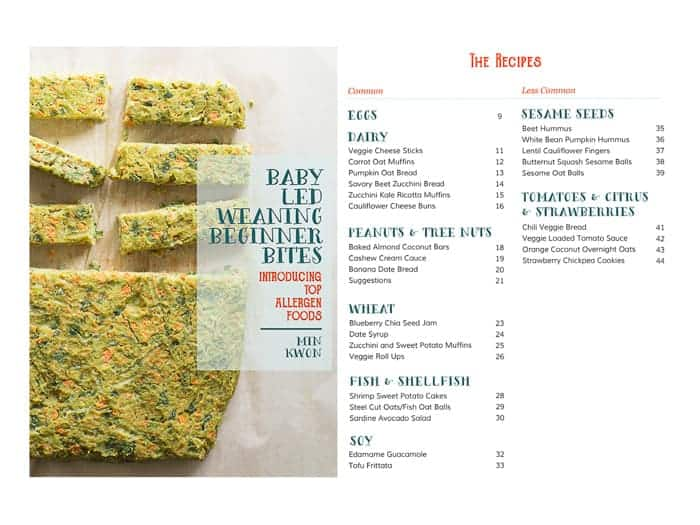 front cover page and table of contents for my first ecookbook baby led weaning