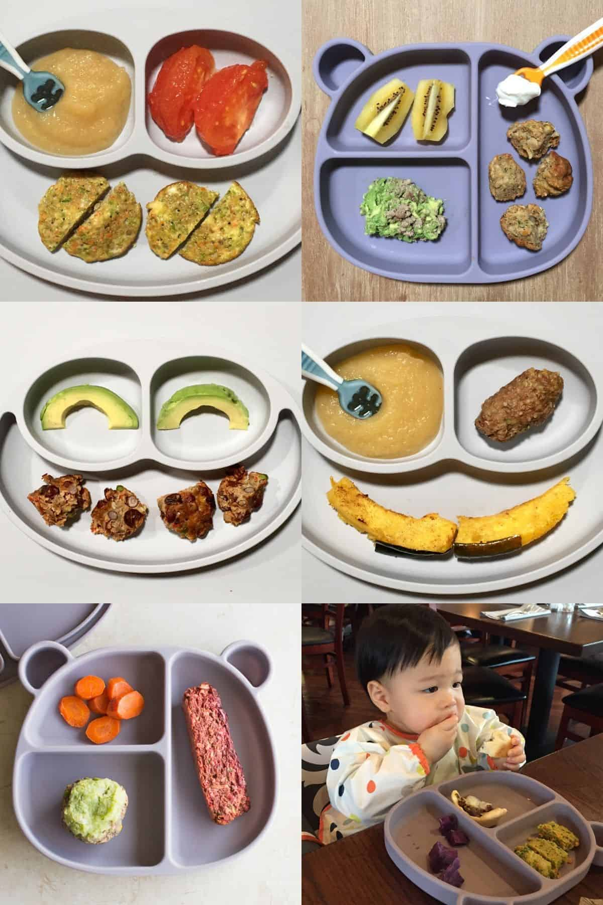 five plates with different baby led weaning baked goods