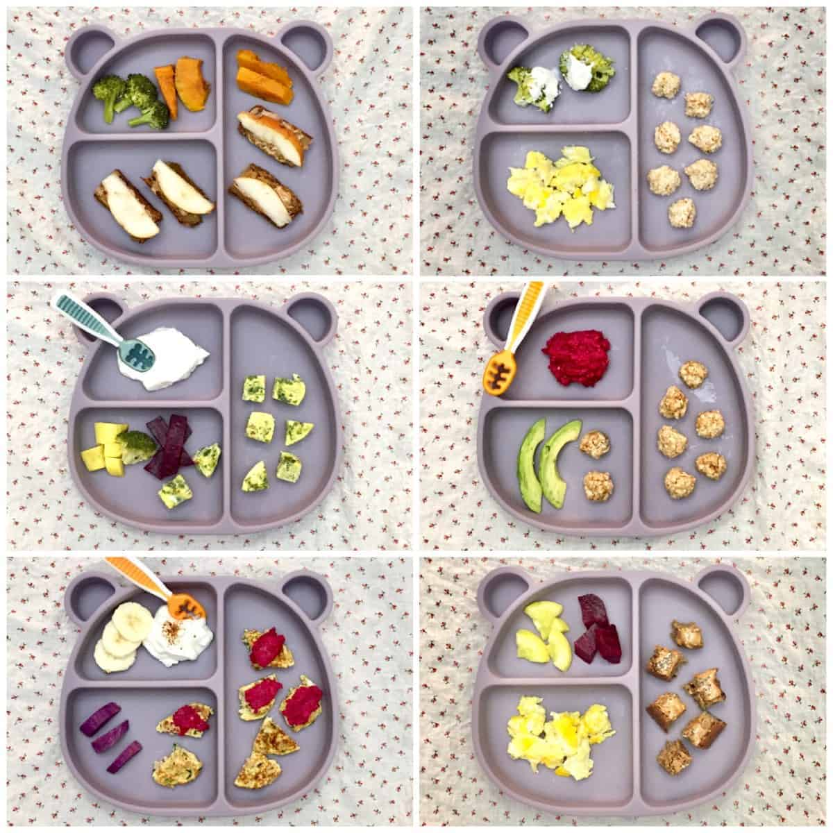 six breakfast ideas for 11 month old baby served on a blue bear shaped plate