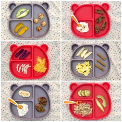 six breakfast ideas for 9 months served on a blue and red bear-shaped silicone plate