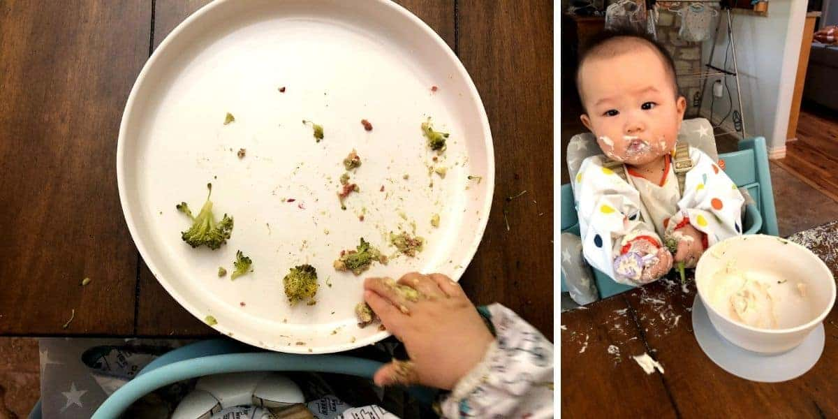 a two image collage with a baby's hand in big white baby's plate on the left and baby eating from a white bowl on the right