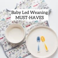 full sleeved bib, two baby spoons, a large white plate and bowl